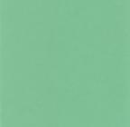 ЛДСП зеленый-фон-шатт Дядьково мебель на заказ воронеж